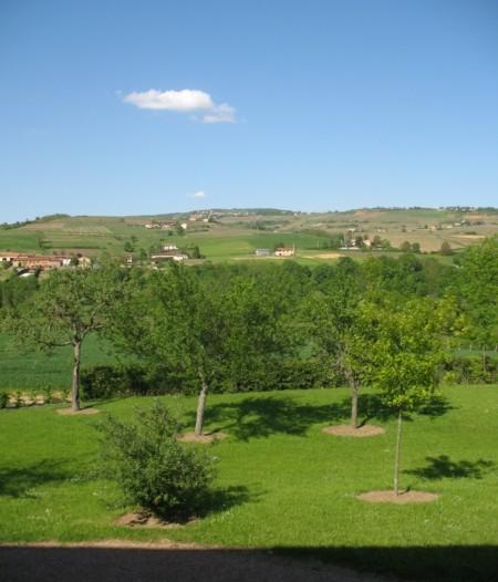Vue sur la colline depuis la chambre Sillon